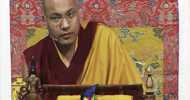 Karmapa Talks On Buddhism And Eating Meat
