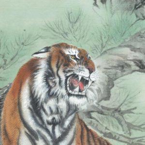 tiger-1-1000x1000
