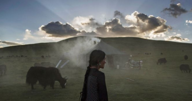 Climate Change on Tibetan Plateau is Threatening Life: Report